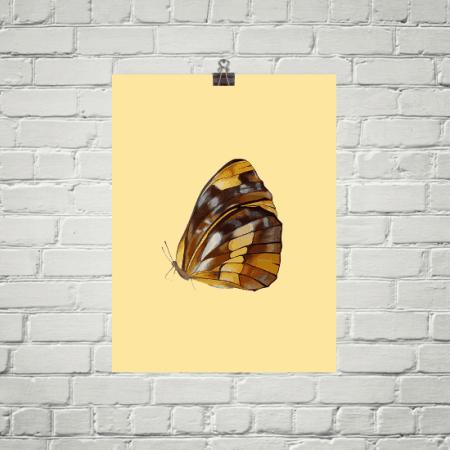 Deyana Deco - BUTTERFLY Poster 12x16