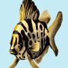 Deyana Deco - YELLOW FISH Poster Preview